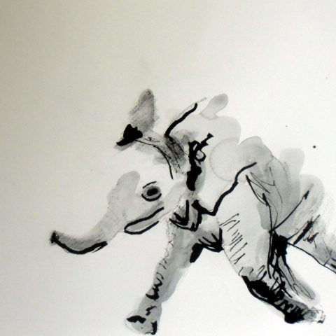 Elephant_ink_Ilaria Berenice. Sold, fine art prints available