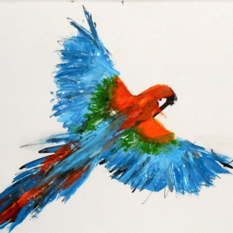 Wild budgie 25x35cm Ilaria Berenice. Sold, prints available.